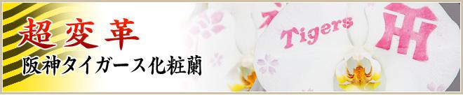 阪神タイガース化粧蘭バナー阪神タイガース化粧蘭&野球速報!阪神試合結果