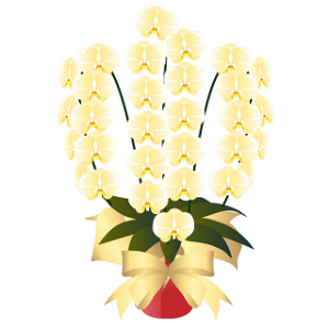 黄色胡蝶蘭値段イラスト黄色金沢片町