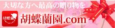 胡蝶蘭園.com234