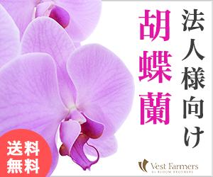 胡蝶蘭値段HANAMARO はなまろヴェストファーマーズ