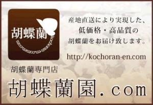 胡蝶蘭値段胡蝶蘭園.com胡蝶蘭園350バナー