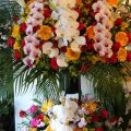 博多にお祝い胡蝶蘭やスタンド花を安く、そして当日配達してもらいたいが、どこの花屋さんへ頼んだらよいか探しておられる方へ。博多に当日配達可能、その方法、失敗しないポイントなどを簡単にまとめてみました。プレミアガーデン高級スタンド2段花税込59400円