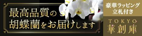 グリーンジャングル東京華倉庫胡蝶蘭値段5