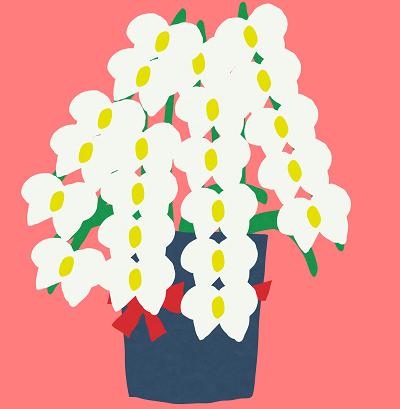 胡蝶蘭値段イラスト1-400。胡蝶蘭値段、開店祝い、開業祝い、就任祝い、移転祝い、当選祝い、還暦のお祝い、新築祝い本立て、5本立て、3本、胡蝶蘭値段違い、胡蝶蘭値段高い