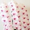 プレミアガーデン胡蝶蘭の口コミ。リーズナブルな値段、他社と比較しても同値段帯で花数が多くワンランク上の胡蝶蘭を扱っている、と評判の人気ネットショップです。とても丁寧な対応で、初めてのネット胡蝶蘭でも安心のプレミアンガーデンの胡蝶蘭の口コミをまとめています。プレミアガーデン赤リップ3本52リン