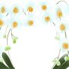 イラスト胡蝶蘭の値段の違いについて。胡蝶蘭の値段の違いはどんな事で起こってくるのでしょうか?胡蝶蘭の値段が違ってくる要因、胡蝶蘭の選び方、おすすめの胡蝶蘭通販について簡単にまとめています。胡蝶蘭値段白イラスト400